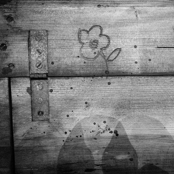 Photo poétique d'une fleur gravée sur une caisse en bois du TNP Théâtre